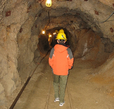 Exploring the Mine