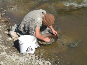 Panning for Gold near the Arctic Circle